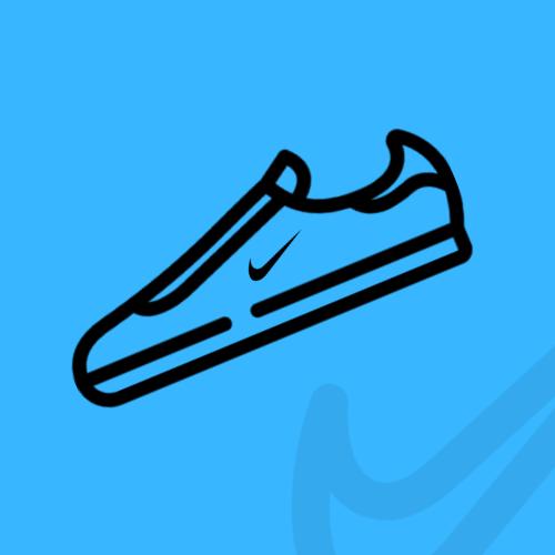 Nike Parkour Shoes